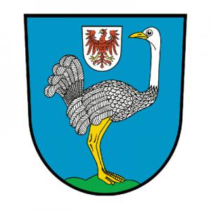 stadt strausburg 300x300 - Referenzen