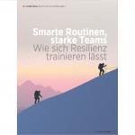 Die Resilienz von Organisationen und Teams stärken (pdf)